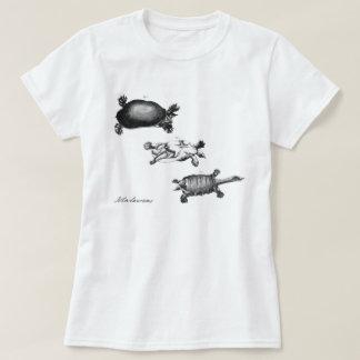 John Laurens's Turtles Tee Shirt
