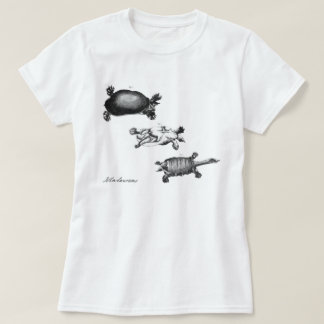 John Laurens's Turtles Tshirts