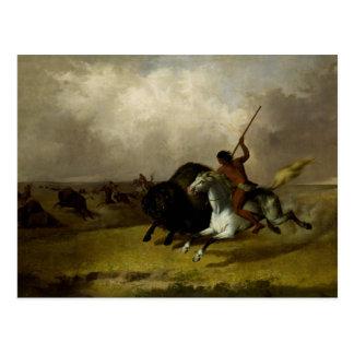 John Mix Stanley - Buffalo Hunt on the Southwester Postcard