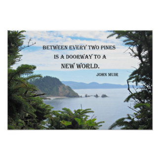 John Muir Quote Posters | Zazzle