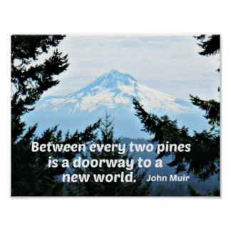 "John Muir: ""Between every two pines is a doorway"" Poster"