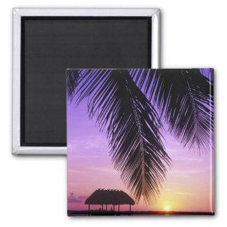 John Pennekamp State Park, Florida Keys, Key Fridge Magnets