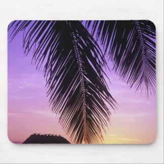 John Pennekamp State Park, Florida Keys, Key Mouse Pad