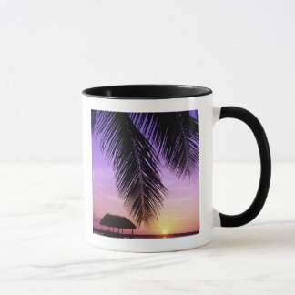John Pennekamp State Park, Florida Keys, Key Mug
