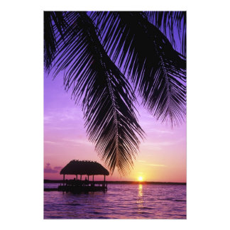 John Pennekamp State Park, Florida Keys, Key Photo Print