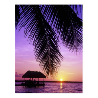 John Pennekamp State Park, Florida Keys, Key Post Card