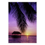 John Pennekamp State Park, Florida Keys, Key Print