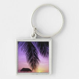 John Pennekamp State Park, Florida Keys, Key Silver-Colored Square Keychain