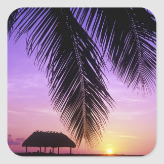 John Pennekamp State Park, Florida Keys, Key Square Sticker