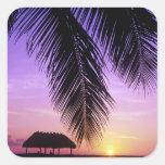 John Pennekamp State Park, Florida Keys, Key Square Sticker