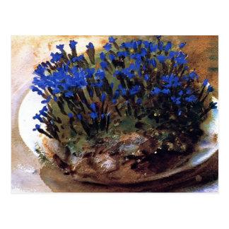 John Singer Sargent- Blue Gentians Postcard