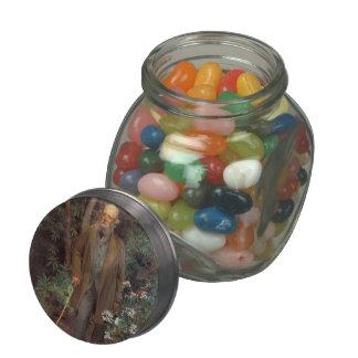 John Singer Sargent- Frederick Law Olmsted Glass Candy Jars
