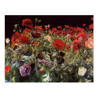 John Singer Sargent- Poppies Postcard