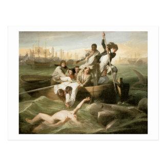 John Singleton Copley Watson and the Shark Postcard