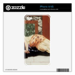 John William Godward - Endymion Decals For The iPhone 4