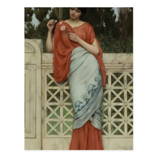 John William Godward- He Loves Me, He Loves Me Not Postcard