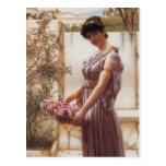 John William Godward- The Flowers of Venus Postcard
