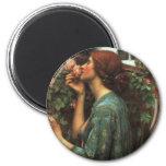 John William Waterhouse, My Sweet Rose (1903) Fridge Magnet