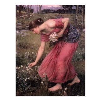 John William Waterhouse- Narcissus Postcard
