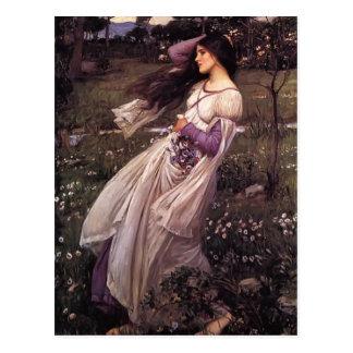 John William Waterhouse- Windflowers Postcard