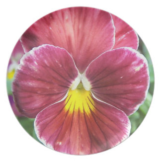 Johnny Jump Up Flowers Plate