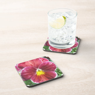 Johnny Jump Up Flowers Set of Coasters
