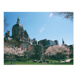 Johns Hopkins Hospital Postcards