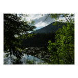 Johns Lake I at Glacier National Park Poster