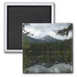 Johns Lake II at Glacier National Park Magnet
