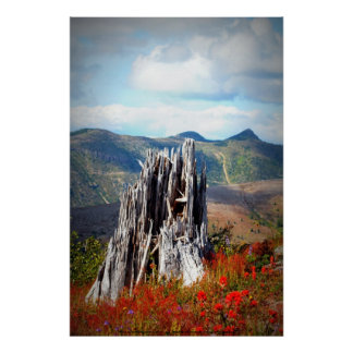 Johnston's Ridge like something out of Oz Poster
