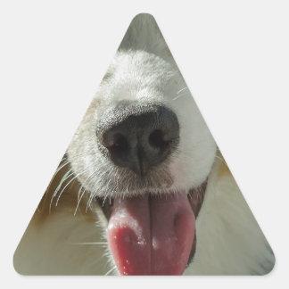Joker Boy Triangle Sticker