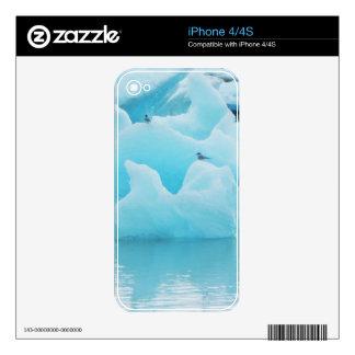 Jökulsárlón terns skin for the iPhone 4S
