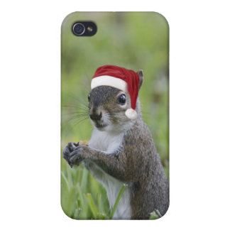 Jolly Santa Squirrel Fun Christmas Holiday iPhone 4 Case