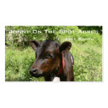 Jonny On The Spot Acres Double-Sided Standard Business Cards (Pack Of 100)