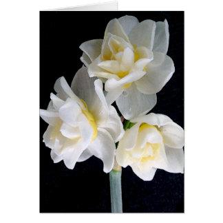 Jonquil Flower - Ecclesiastes 3:1 Card