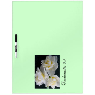 Jonquil Flower - Ecclesiastes 3:1 Dry Erase Boards