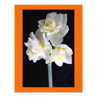 Jonquil Flower - Ecclesiastes 3:1 Flyers