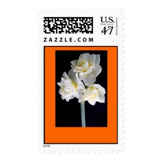 Jonquil Flower - Ecclesiastes 3:1 Postage Stamp