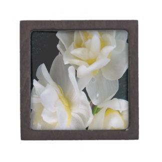 Jonquil Flower - Ecclesiastes 3:1 Premium Gift Boxes
