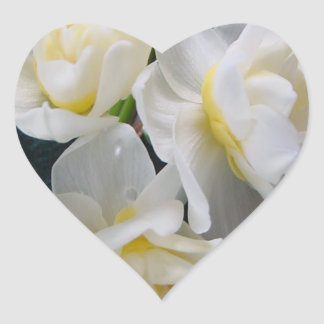 Jonquil Flower - Ecclesiastes 3:1 Heart Stickers