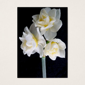 Jonquil Flower - Ecclesiastes 3:1 Tract Card /