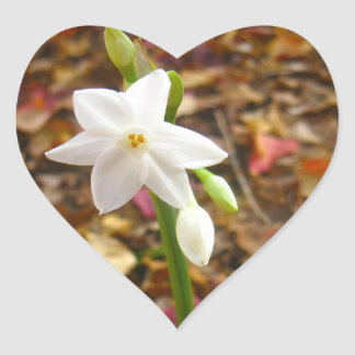 Jonquils white heart sticker