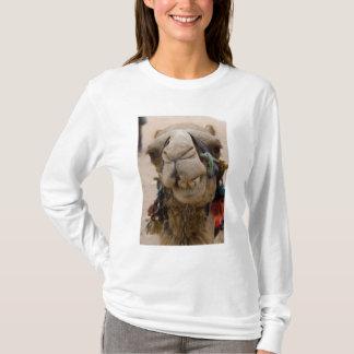 Jordan, Ancient Nabataean city of Petra. Local T-Shirt