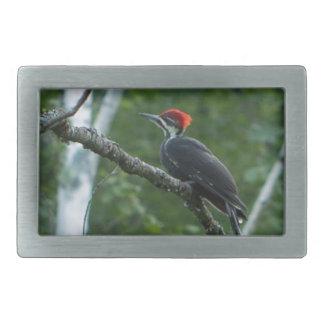 Jordan Pond Pileated Woodpecker. Rectangular Belt Buckle