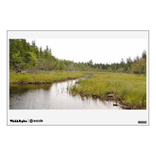 Jordan Pond Swamp Room Graphics Zazzle