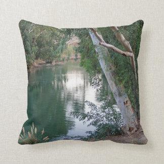 Jordan River in Israel Pillow