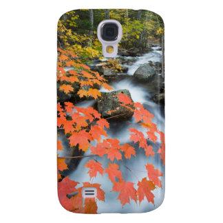 Jordan Stream in fall in Maine's Acadia National Samsung S4 Case