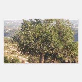 Jordan Tree Rectangular Sticker