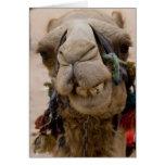 Jordania, ciudad antigua de Nabataean del Petra. L Tarjeta De Felicitación