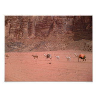 Jordania - ron del lecho de un río seco poster